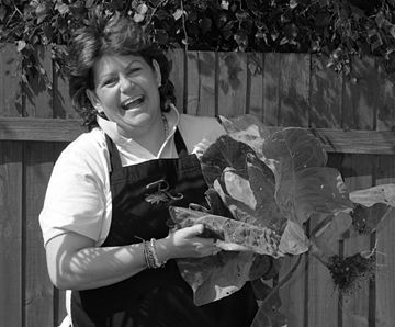 rachel green, celebrity chef, cookery courses, peak district